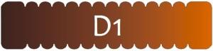 d1.profil